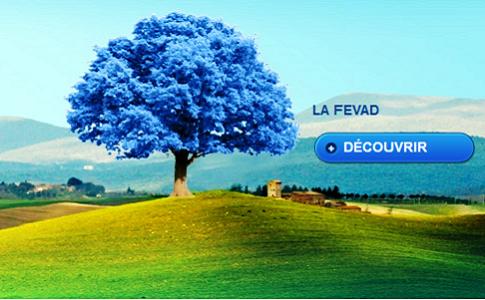 La FEVAD : e-commerce et VAD