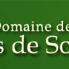 domaineportedesologne-logo