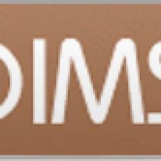 logo_client_dimsi