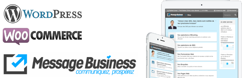WordPress-Woocommerce-Message-Business