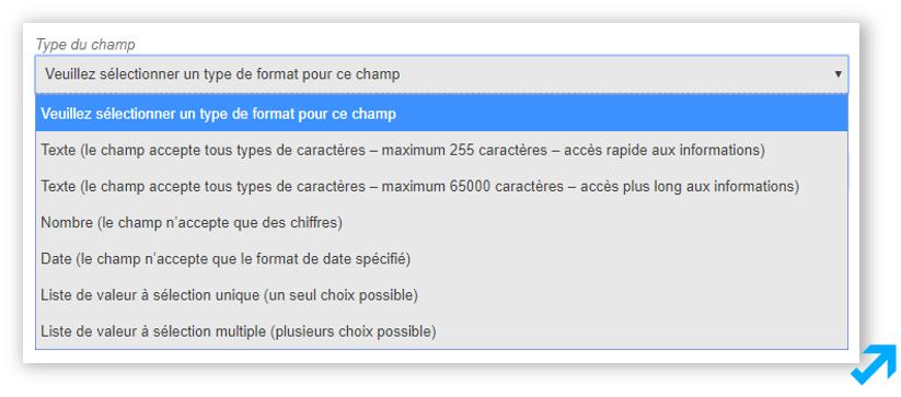 Capture d'écran de l'application Sendethic représentant divers types de champs