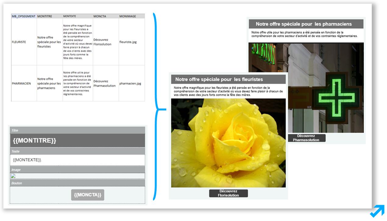 Exemple de programmation de campagnes pour fleuriste et pharmaciens selon des critères prédéfinis